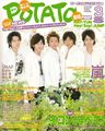 2008 03 potato