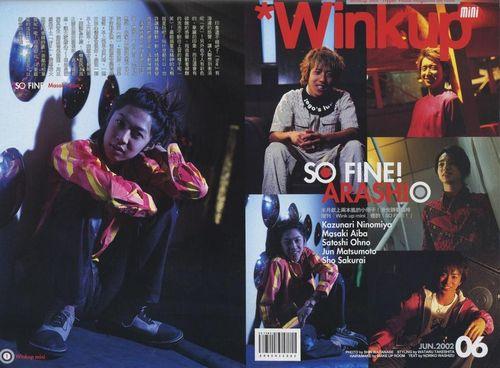Winkup06200201