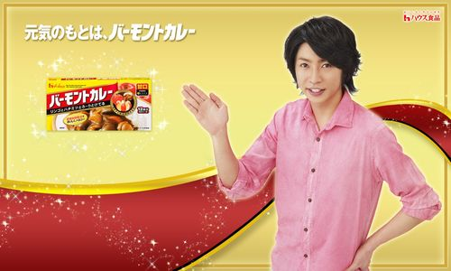 2011.05 PUBLICITE HOUSEFOODS VERMONT CURRY (バーモントカレー) 02